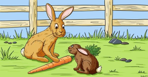 rabbits-illustration-SD